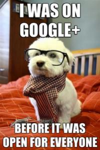 google-plus-200x300