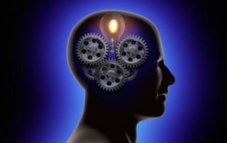 Innovation brain