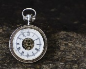 Map compass, symbolizing website navigation