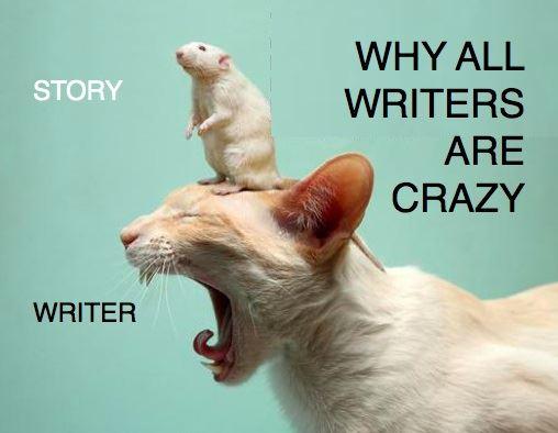 CatCrazyWriter