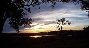 MS Sunrise