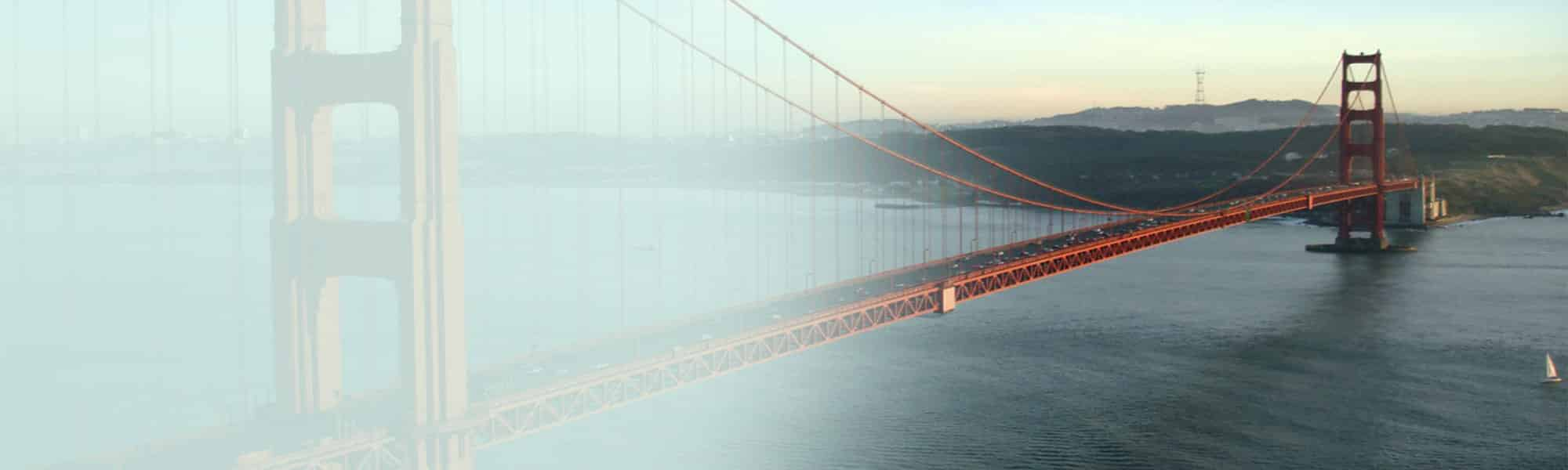 Bridge the gap between data and conversion with seo consulting
