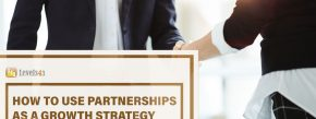 Business Growth Strategy #43: Partnerships | Level343 LLC
