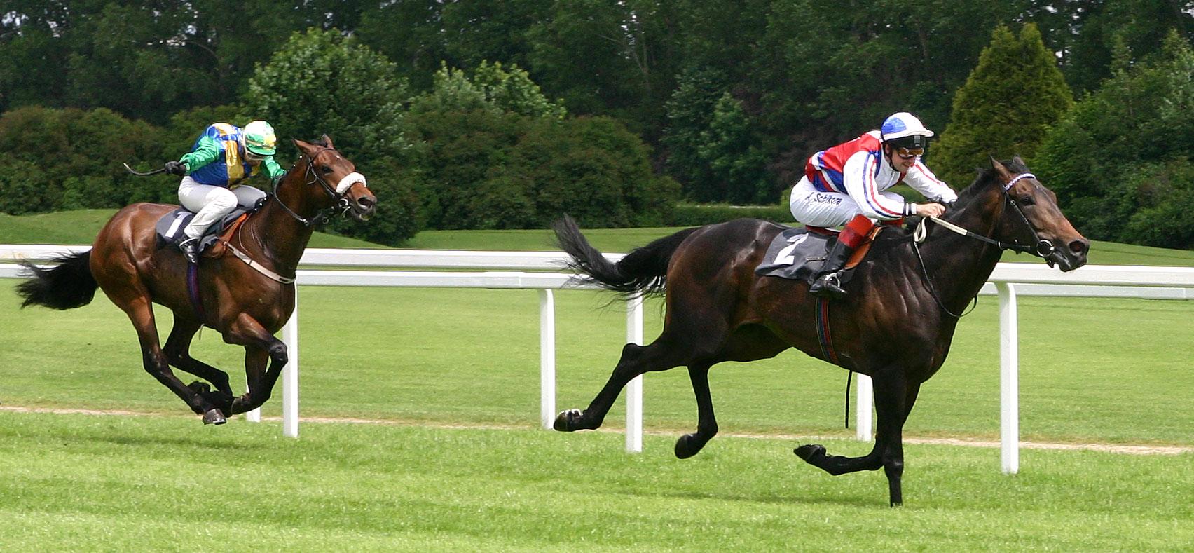 horse-racing-5