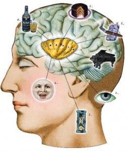 Brain Overwhelmed image