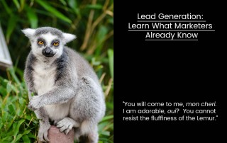 A Lemur talks lead generation