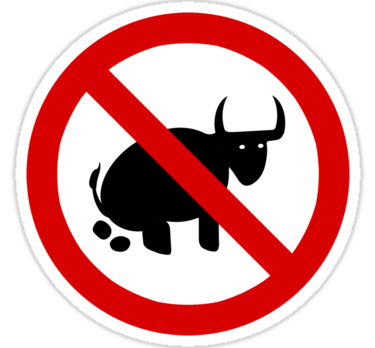 No Bullshit Zone