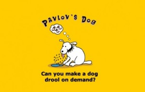 pavlovs-dog-416x266
