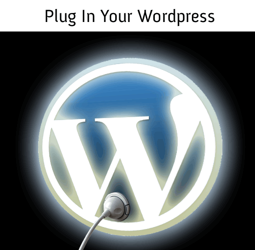 Plug In Your WordPress