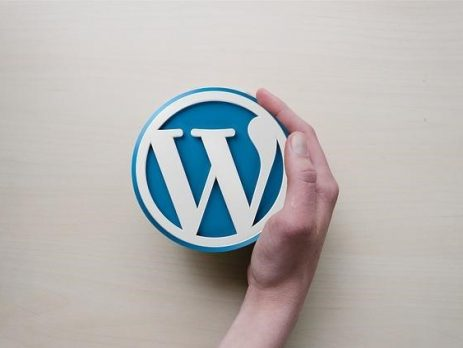 A hand touching a WordPress logo against a white background, representing common WordPress problems.